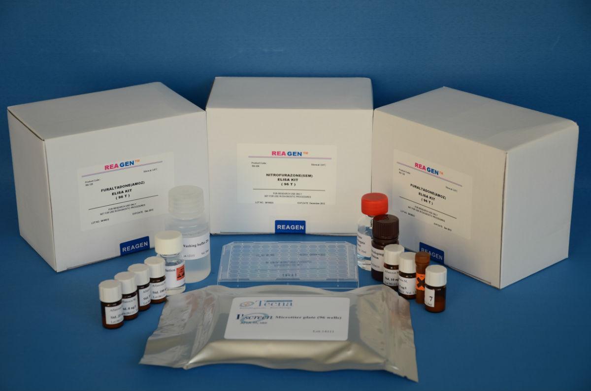 小鼠ELISA检测试剂盒组成