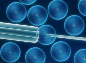 """研究人员现在能够在""""拟人化""""的老鼠身上摧毁这种病毒"""