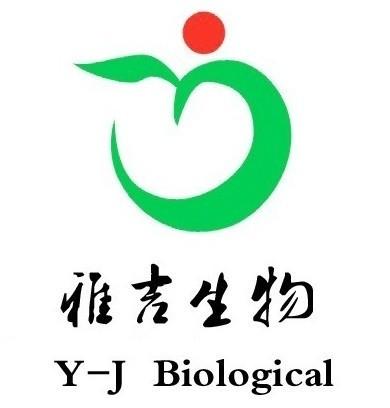 口蹄疫亚洲Ⅰ型抗体检测试剂盒