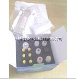 TNF-α试剂盒,大鼠肿瘤坏死因子α检测试剂盒