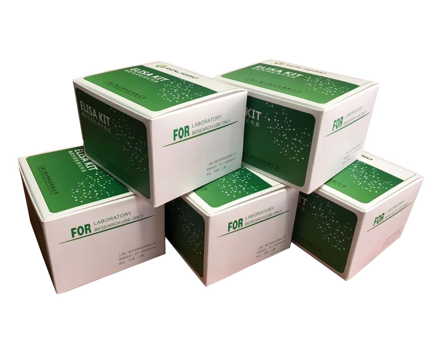 PⅢNP,小鼠Ⅲ型前胶原氨基端肽ELISA试剂盒