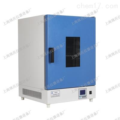 立式电热恒温鼓风干燥箱 电热烘箱 上海高温干燥箱