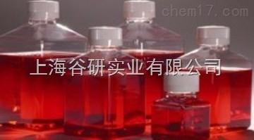 酵母粉琼脂图片