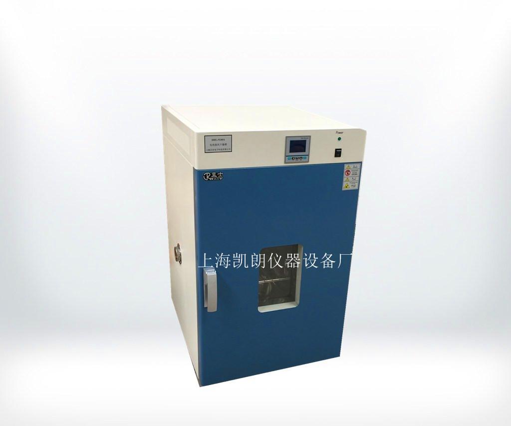 250℃立式鼓風幹燥箱