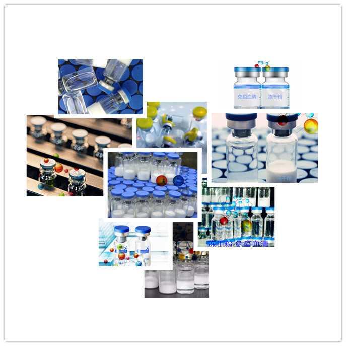 重组人乳转铁蛋白(rh-LTF)现货供应