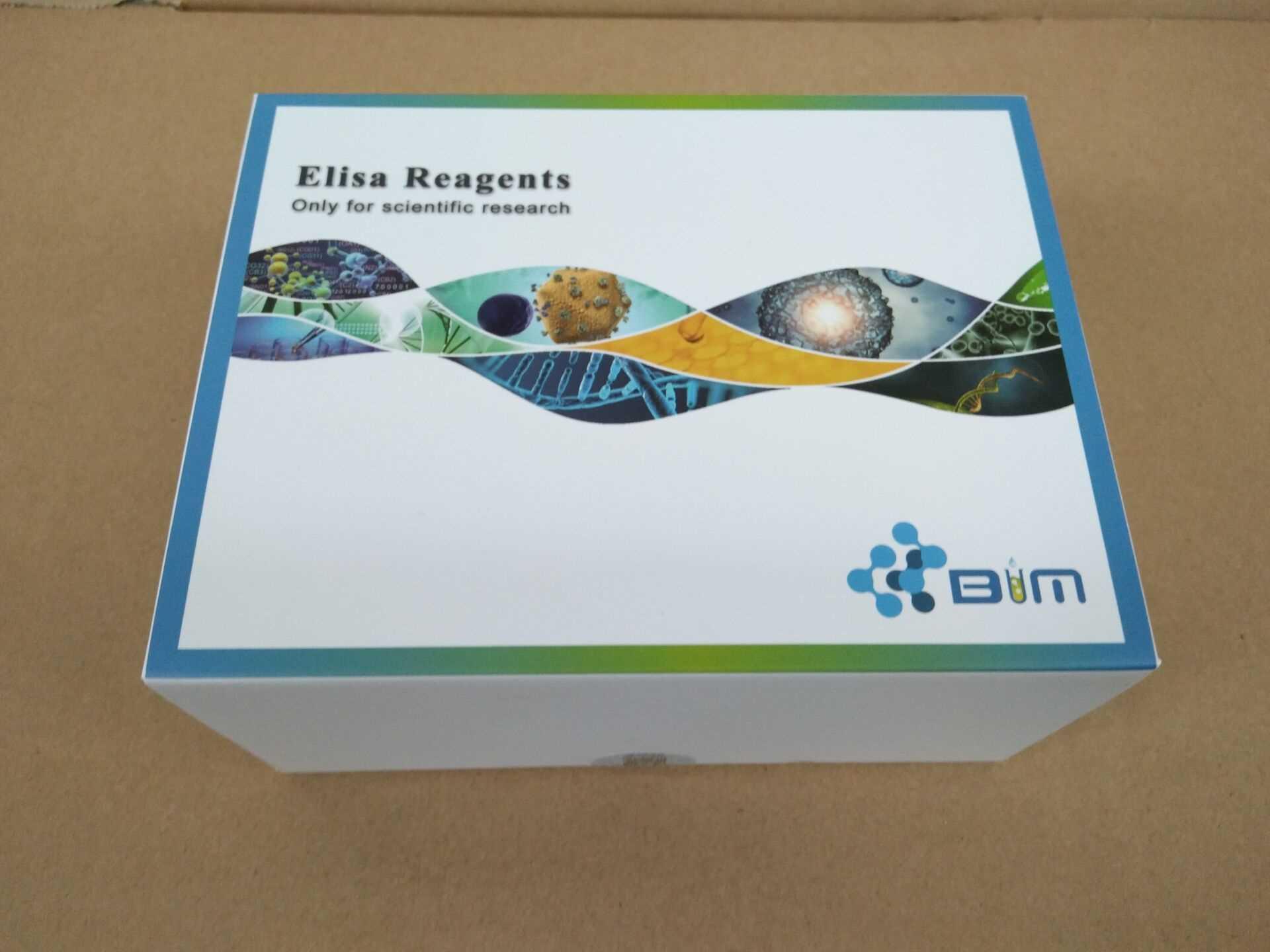 人蛋白激酶C-β1(PKCβ1)ELISA试剂盒@新闻头条