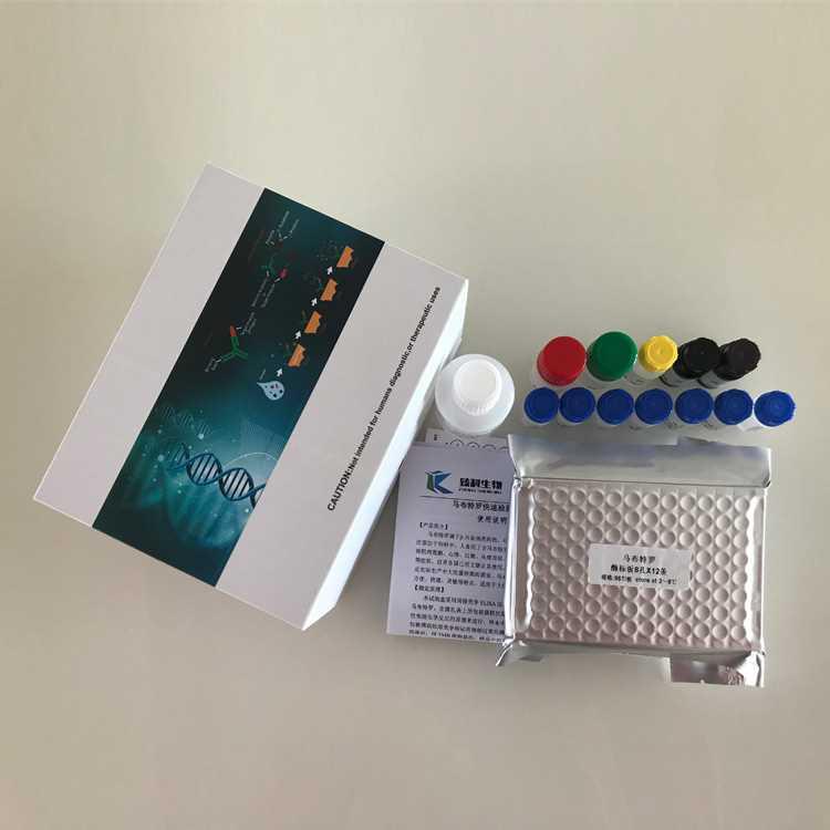 小鼠C肽(C-P)ELISA试剂盒