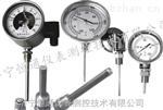 WSS双金属温度计,压力式温度计