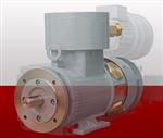 现货供应Winkelmann的GNFZE 225L/2 / 30 kW电机