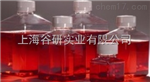 乳糖胆盐发酵培养基图片