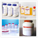 磷硫铁试剂(P-S-Fe试剂)