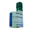1ml  0.2mlP53凋亡刺激蛋白2抗体