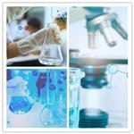 高效细胞培养袋