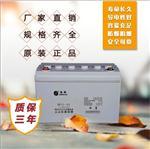 圣阳蓄电池SP12-100AH 圣阳太阳能光伏专用蓄电池ups蓄电池安装