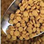 PAGA70膨化八哥鸟食饲料颗粒造粒生产机器宠物鸟粮食加工设备