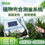FT-GH30便携式光合作用测定仪-便携式光合作用测定仪
