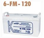 科士�_免�S�o蓄�池6-FM-120/12V120AH