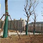 gsb01单层裹树毡-辉门公司快报