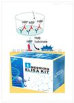 总三碘甲状腺原氨酸放免检测试剂盒