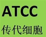 1301 细胞 ATCC来源 传代细胞