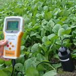 浙江托普TZS土壤水分测定仪  价格,使用说明