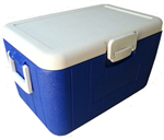 40LGSP认证专用药品保温箱