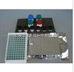 牛Ⅲ型胶原(COL3)检测试剂盒