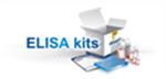 仓鼠组织蛋白酶K(cath-K)ELISA试剂盒