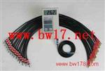 便携式建筑电子测温仪 建筑电子测温仪