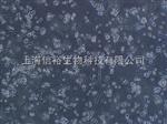人胚肾细胞,293(HEK-293)细胞