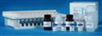 白介素��┖�,小鼠白介素1α(IL-1α)��┖�