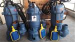全自动小型潜水排污泵,220V带浮球潜水排污泵