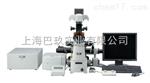 奥林巴斯CKX41-F32FL显微镜_荧光显微镜型号 价格 参数