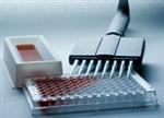 R&D试剂盒,大鼠淋巴细胞因子ELISA试剂盒