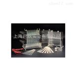 北京六DYCZ-21型多用途电泳仪厂直销