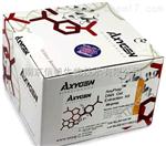 性激素6项放免实验代测