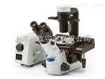 奥林巴斯显微镜CKX53系列直销价