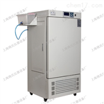 YQH-250F上海人工气候箱,种子培养箱,智能人工气候培养柜