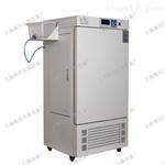 上海可编程程序控制仪表 人工气候培养箱