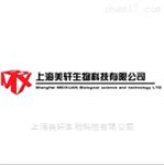 SGC7901/V人胃癌长春新碱耐药细胞株