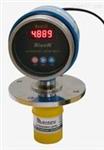 北京GR/RISEN超声波油库油位测量仪现货供应