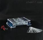 北京SH/DYCP-34A琼脂糖水平电泳槽工作原理