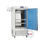 ZMJ-100-II霉菌培养箱