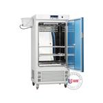 ZMJ-300-II霉菌培养箱