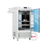 ZHS-300SC恒温恒湿箱