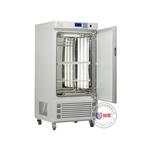 ZGC-250I光照培养箱