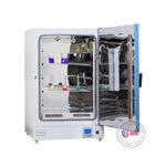 TLG-9625A620L立式鼓风干燥箱
