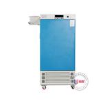 ZHS-300SC恒温恒湿培养箱
