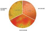 李斯特菌显色培养基