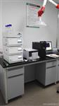 邻苯二甲酸酯的检测解决方案|天瑞仪器